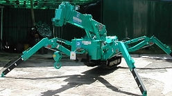 Telescopic Crawler Crane