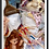 Thumbnail: lapine & cie