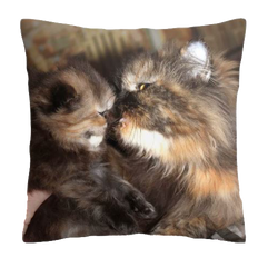 coussin lilou.png