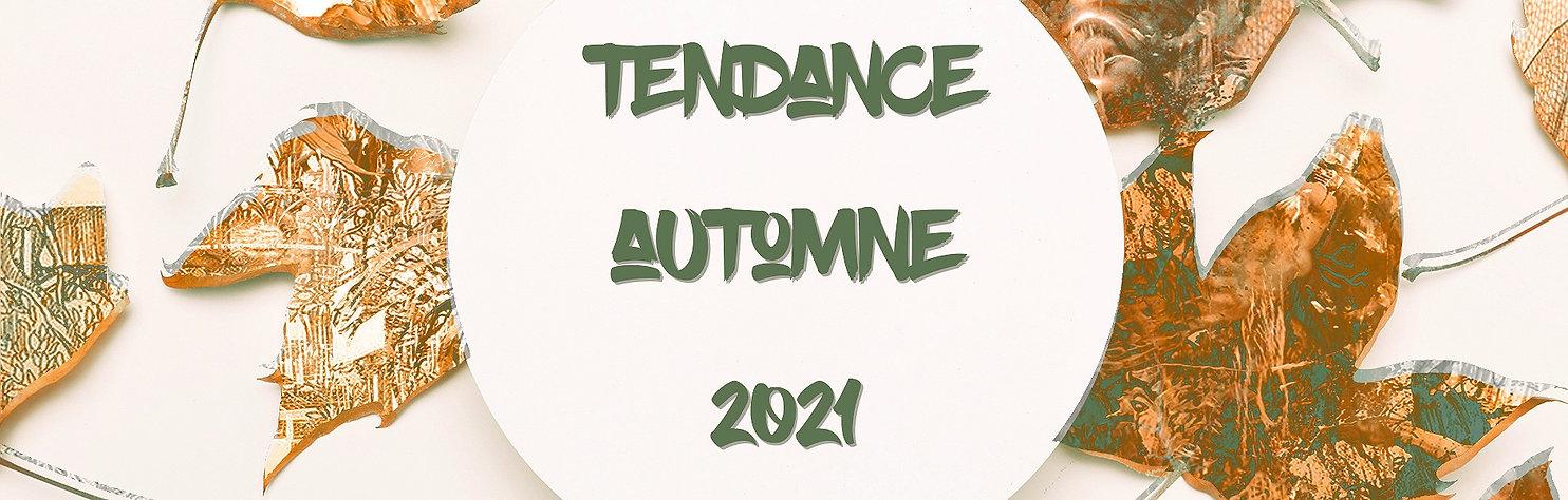 bandeau automne 2021 AAH_edited.jpg