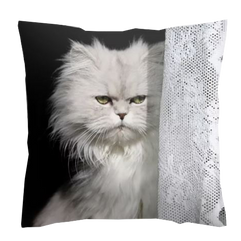 coussin mimi.png