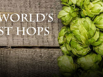 Annual Willamette Valley Hop Outing
