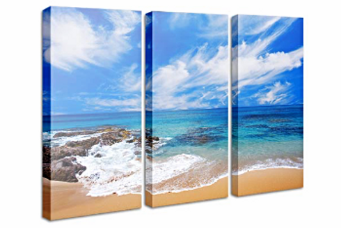 Triptych Canvas