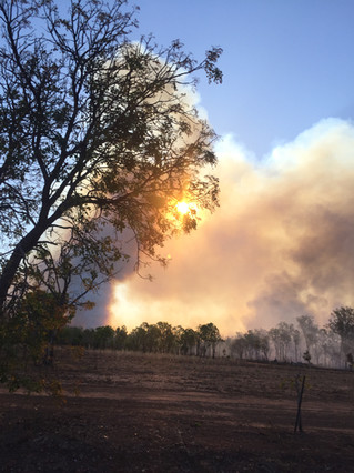 Berry Springs Fire .jpg
