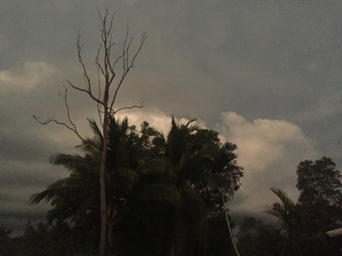 Tiwi Storm Brewing .jpeg
