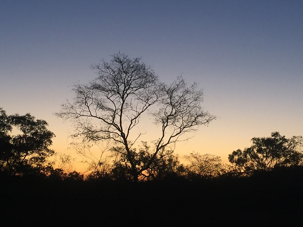 What more can be said about the stunning sunsets in the NT