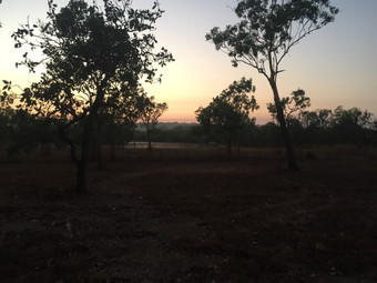 Dawn .jpg