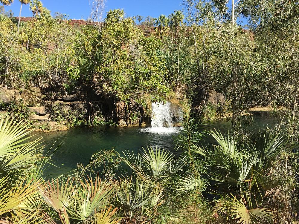 Cool swimming spot