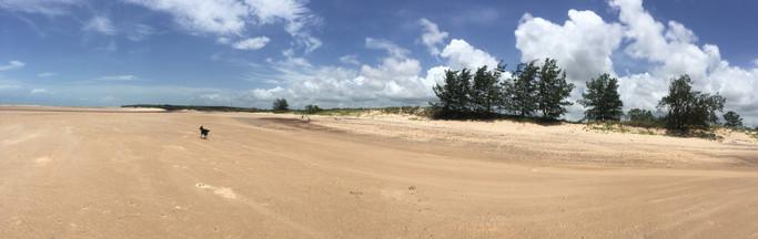 Tarntipi Beach Low Tide .jpg