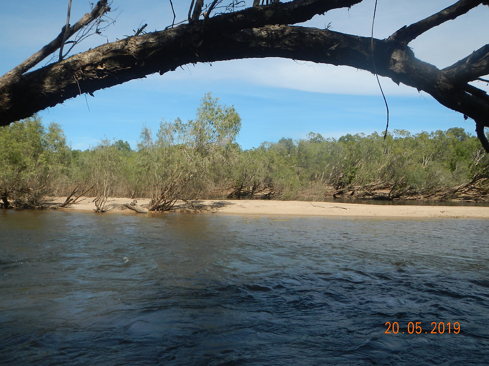 The captivating and Majestic Mitchell River along the Palmerville road