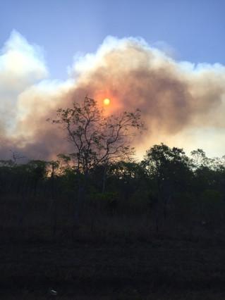 Sunset through the Fire .jpg