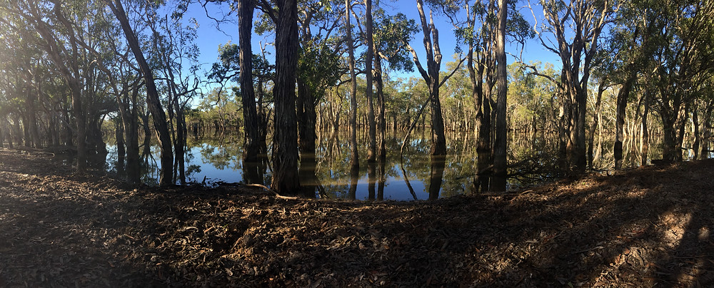 Lagoon by the side of the Orinners rd