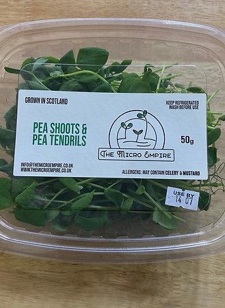 PEA SHOOTS & TENDRILS