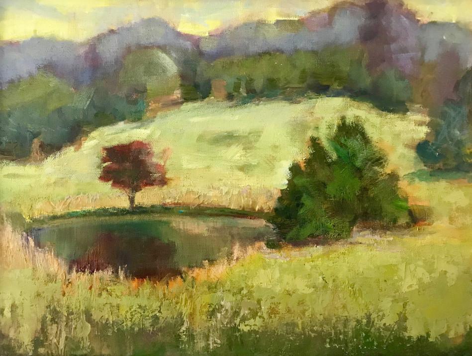 Panorama y Prairie