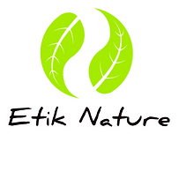 Ethik-Nature.png