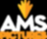 ams_logo2.png