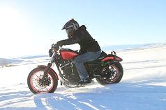 harley stunt rider