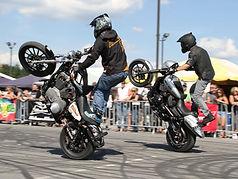 harley stunt team