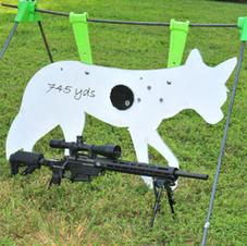APO-TARGET-SHOOT-3
