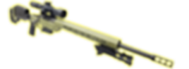 Slide 1 - Rifle Only.png