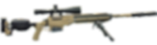 ASW-300WM FDE with Scope, Bipod, Expande
