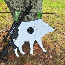 APO-TARGET-SHOOT-16