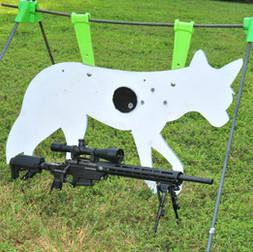 APO-TARGET-SHOOT-2