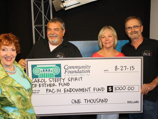 Community Foundation's Carol Steffy Spirit of Esther Fund Supports PAC 14