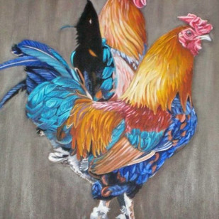 2 Rooster