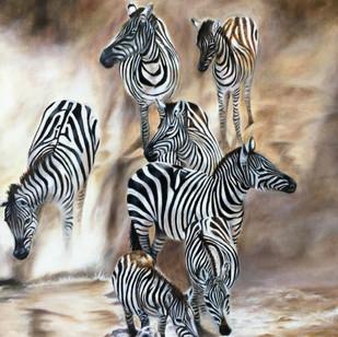 Zebras coming down bank