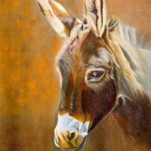 Donkey (Frame)