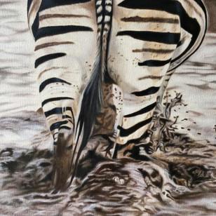 Zebra Bum