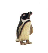 RC 1020431 Penguin with feet