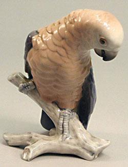 B&G 2019 Parrot