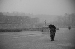 Les Tuileries