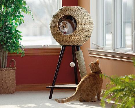 NATURAL CAT TOWER IN ESPRESSO FINISH