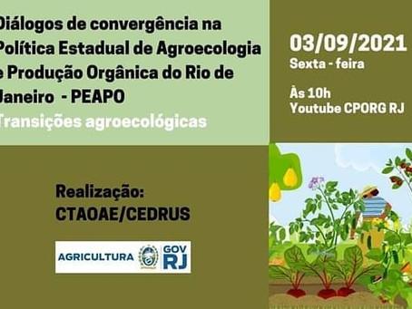 Diálogos de convergência na Política Estadual de Agroecologia e Produção Orgânico do Rio de Janeiro