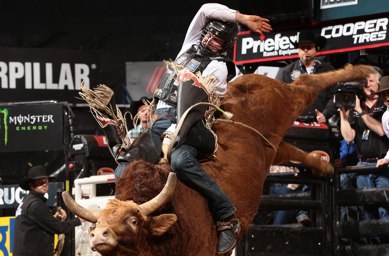PBR Bull Riding