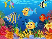 coral-reef-clipart-cartoon-902308-987840