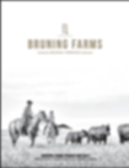 Bruning Farms_2019 Catalog.png