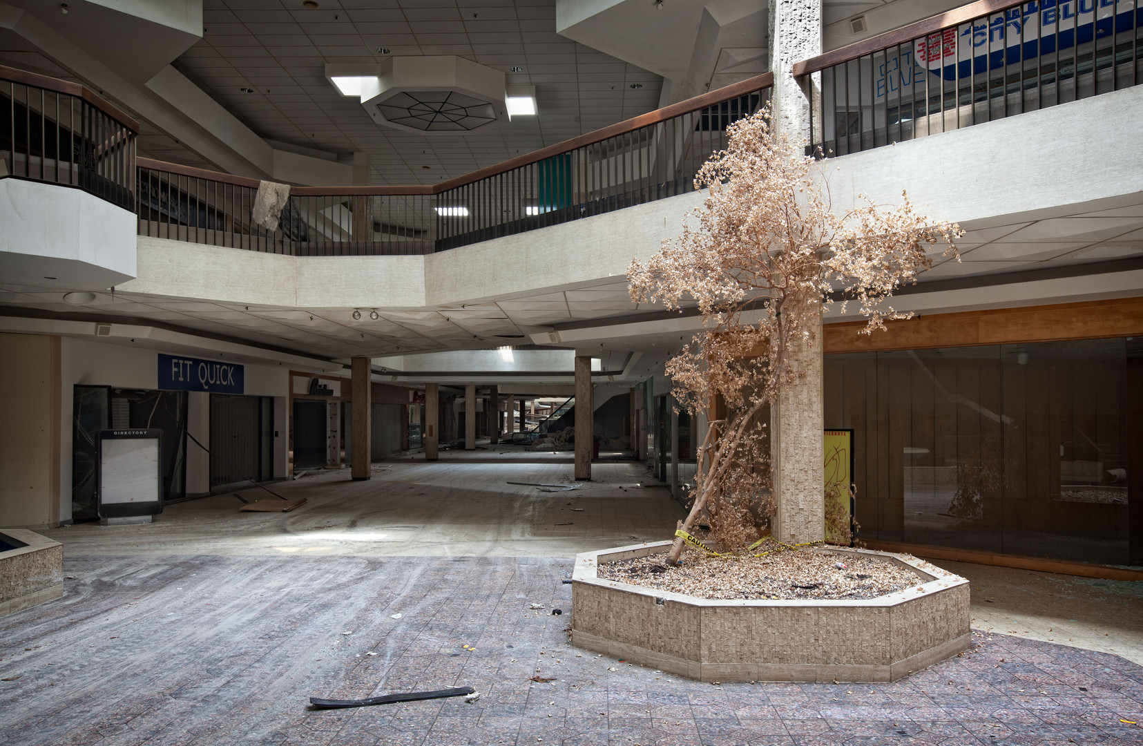 Randall Park Mall | Parched Tree