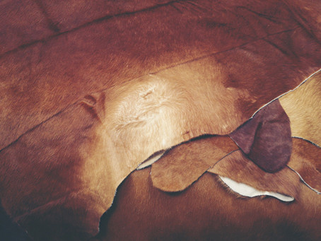 If animal leather is cruel, what about vegan faux leather?