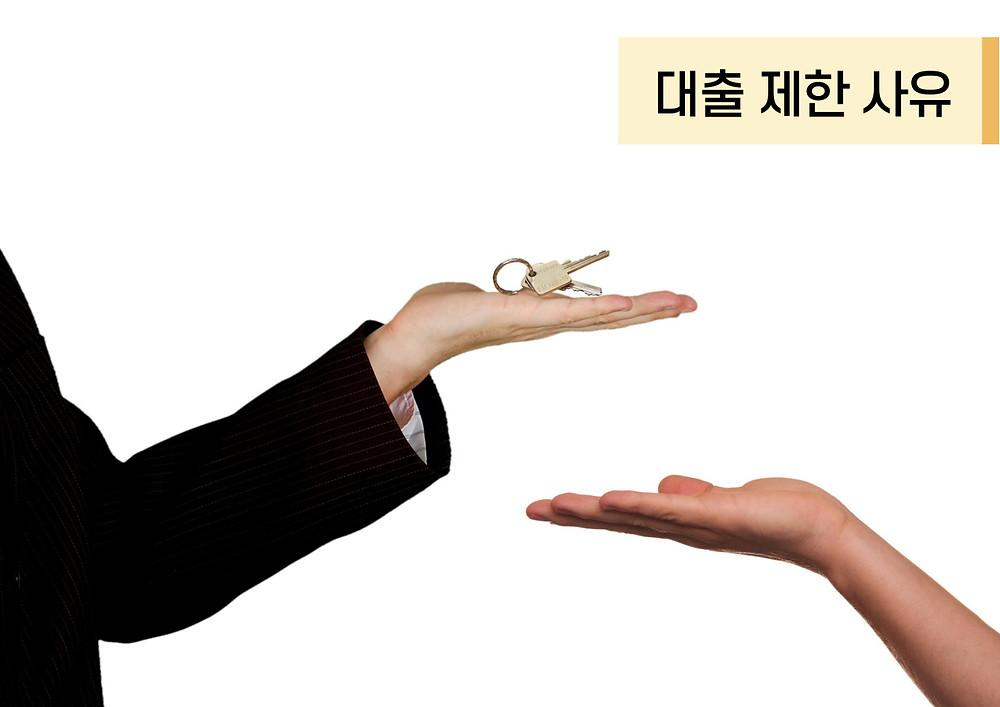 대출 제한 사유