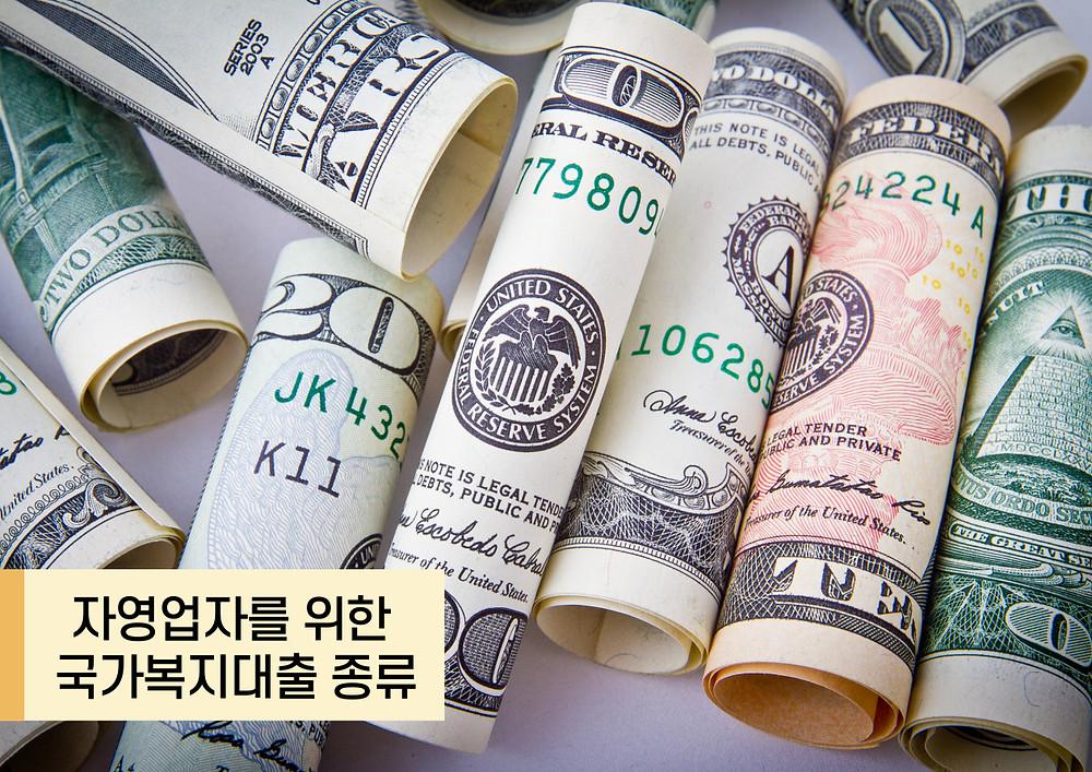 자영업자를 위한 국가복지대출 종류