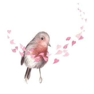 Valentinstag 2021 Rotkehlchen