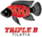 Triple B Tilapia