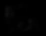 Bozar Logo Cinepocket.png