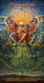 Metamorphosis Image.png