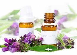 Minnesota Homeopathy