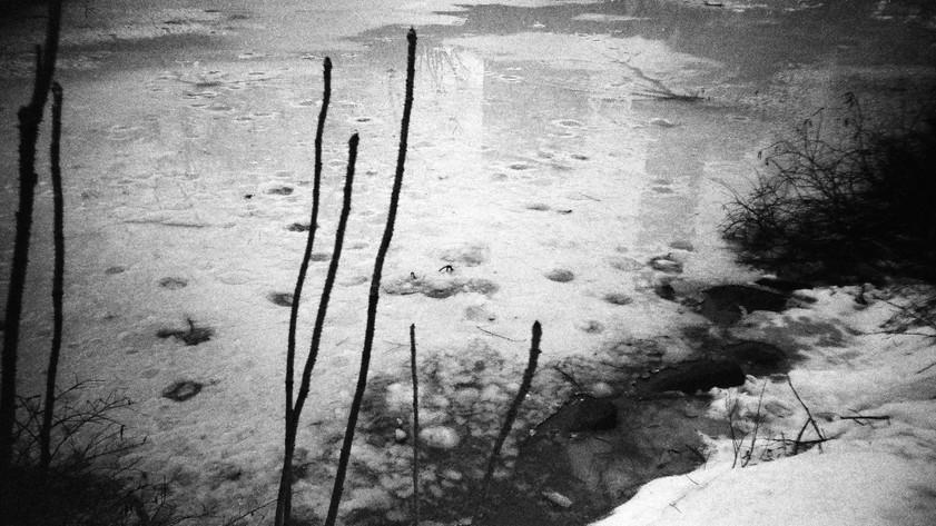 pond contrast.jpg